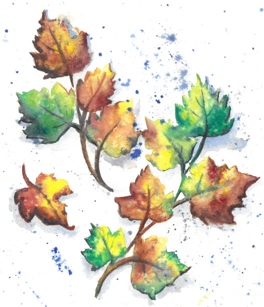 autumn leaves watercolor paintings