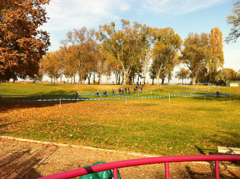 Bikes doing Cyclo Cross in park in autumn